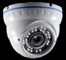 Антивандальная камера TL-VP65SN